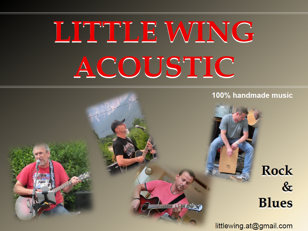 LW_Acoustic_Plakat_20131108_Jibis